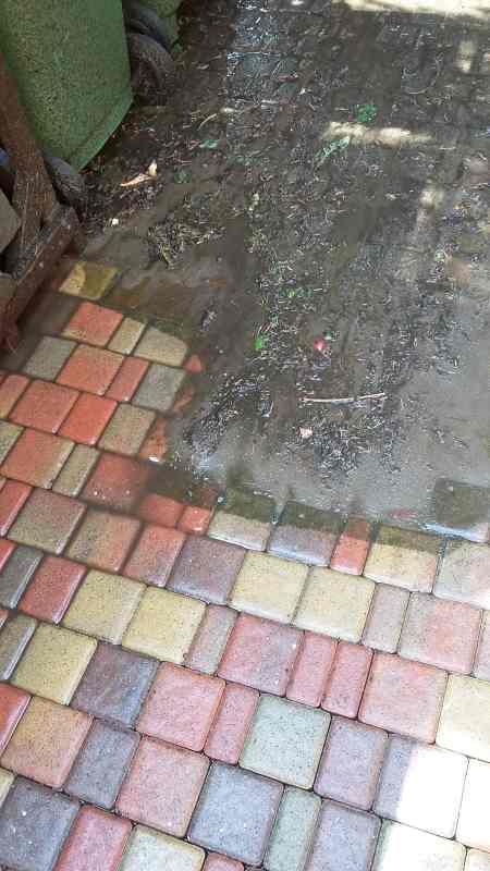 czyszczenie podjazdu Tarnowo Podgórne